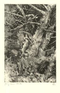 Pentimentbaum
