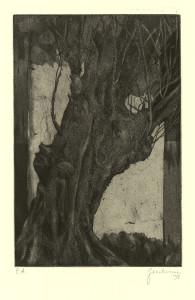Siluettenbaum